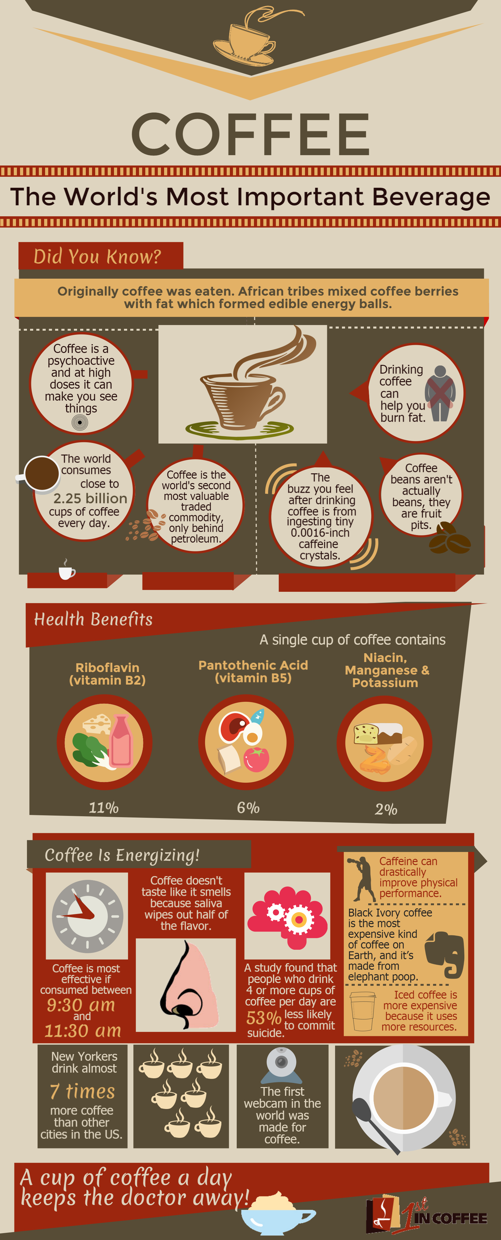 1st in Coffee Infographic